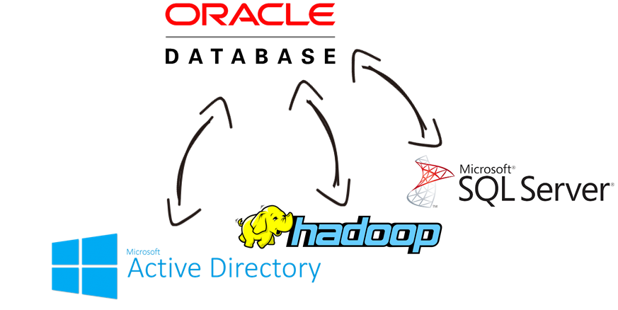 Oracle Database Integration with Microsoft Active Directory, Hadoop, SQL Server, and, virtually any other application or data source that you may need to work with