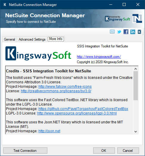 NetSuite ssis connection manager more info